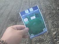 Sh3i0752