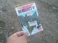 Sh3i1000