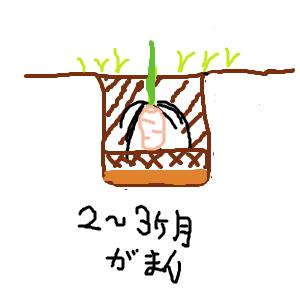 Cocolog_oekaki_2013_04_27_04_38