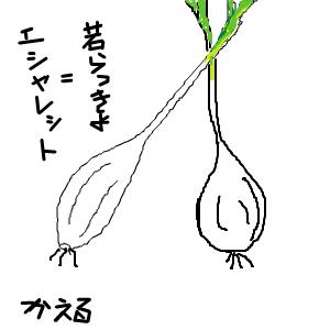 Cocolog_oekaki_2014_02_12_21_18