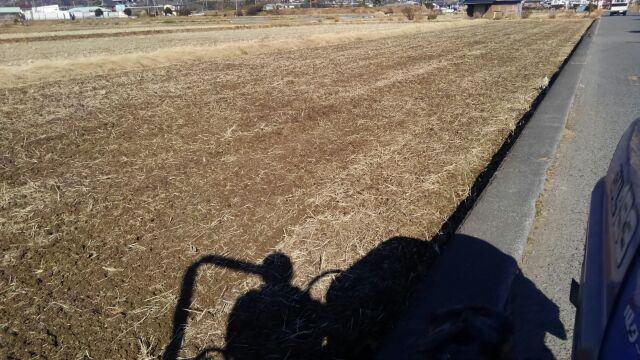 里芋準備 堆肥をすき込む