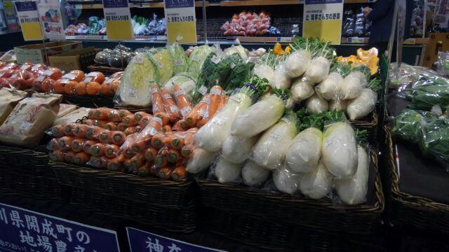 本日は地場産野菜